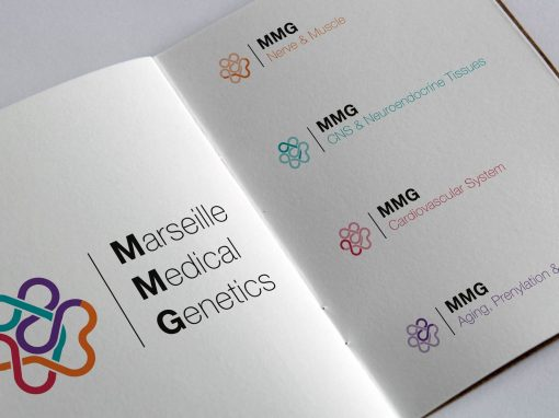 Graphic chart logo mmg